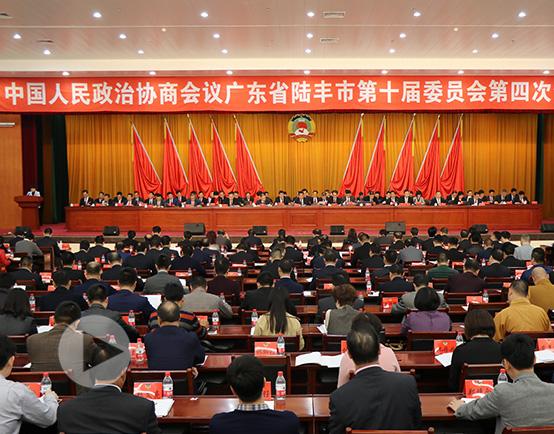政协网站视频图片3